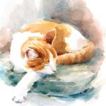Note Card - 5 x Notelets - Ginger Cat - Ling Design