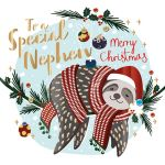 Christmas Card - Nephew - Sloth - Talking Pictures