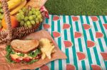 Picnic Blanket - Fleece in Bag - 6 Designs