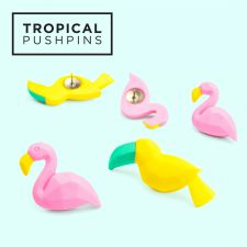 Flamingo Toucan Tropical Pushpins - Drawing Pins