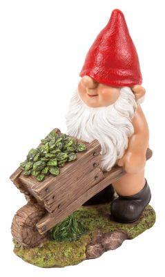Gnaughty Gnome Naughty with Wheelbarrow Ornament Gift - Indoor or Outdoor - Funny