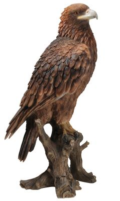 Large Golden Eagle 65cm - Lifelike Garden Ornament - Indoor or Outdoor - Real Life