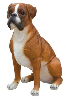 Boxer Dog - Lifelike Garden Ornament - Indoor or Outdoor - Real Life