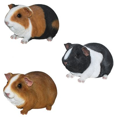 Guinea Pig - Lifelike Ornament Gift - Indoor or Outdoor - Pet Pals