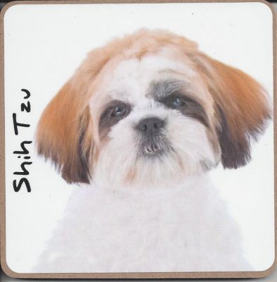 Shih Tzu Dog or Puppy Coaster - Dog Lovers - 3 Designs