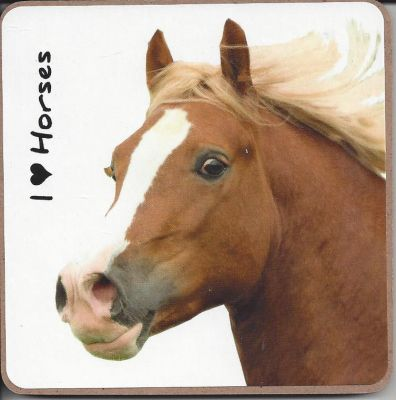 Welsh Pony Horse Coaster - I love Horses
