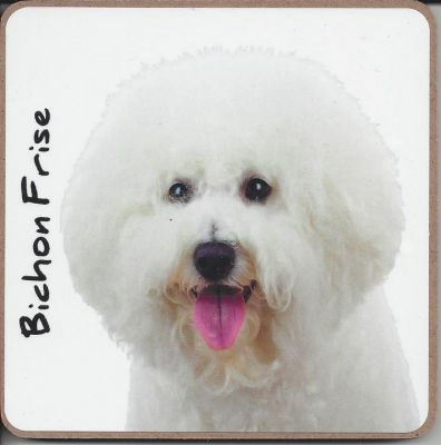 Bichon Frise Dog or Puppy Coaster - Dog Lovers - 3 Designs