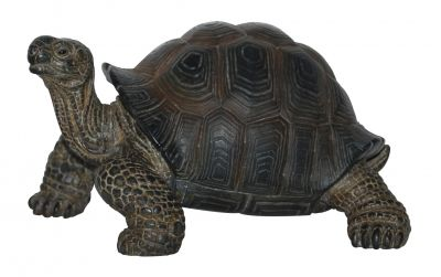 Baby Tortoise - Lifelike Garden Ornament - Indoor or Outdoor - Real Life