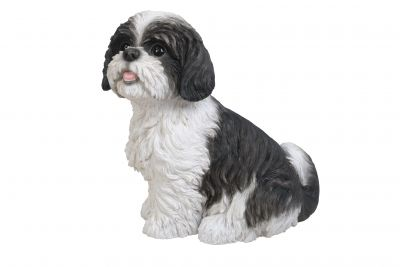 Shih Tzu Dog - Black Sitting Lifelike Garden Ornament - Indoor or Outdoor - Real Life