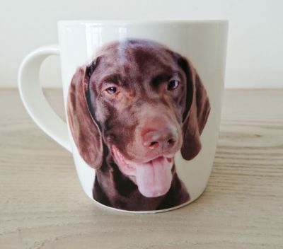 German Shorthaired Pointer  Dog Mug - Dog Lovers Gift