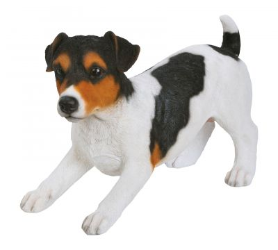 Jack Russell Dog - Tricolour Lifelike Garden Ornament - Indoor or Outdoor - Real Life