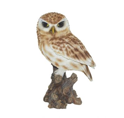 Little Owl - Lifelike Garden Ornament - Indoor or Outdoor - Real Life