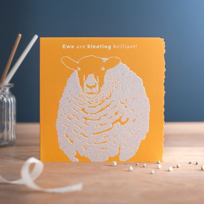 Birthday Open Card - Ewe are Bleating Brilliant - Sheep