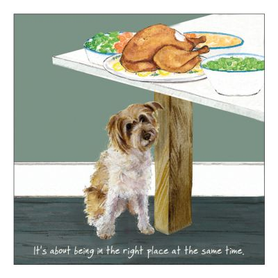Greetings Card - Patterdale Jack Russell X - The Little Dog