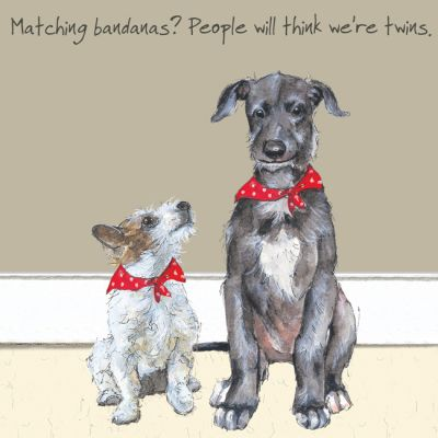 Greetings Card - Scottish Deerhound & Terrier - Twins - The Little Dog